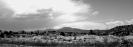 New Mexico_1